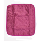 Ruby Red Chair Pad