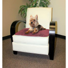 Dog on Rose Chair Pad